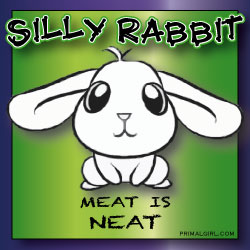 sillyrabbit_MEATNEAT